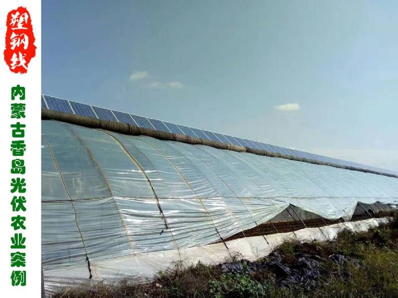 内蒙古香岛光伏农业压膜线和吊果线使用案例
